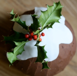 christmas pudding cake
