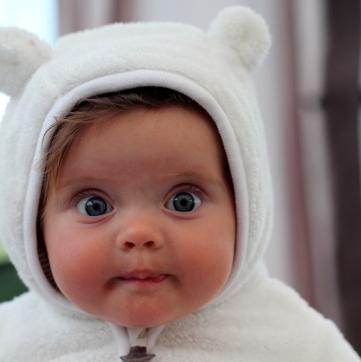lilah bear 2