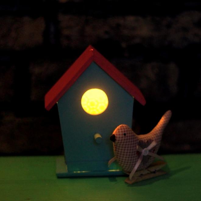 birdbox nightlight little button diaries 13